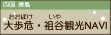 大歩危・祖谷観光NAVI